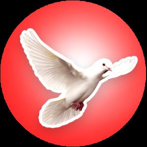 Esprit Nouveau : Méditation de la Bible et de la Parole de Dieu