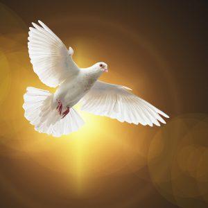 Demander les 7 dons de l'Esprit Saint : Viens Saint Esprit