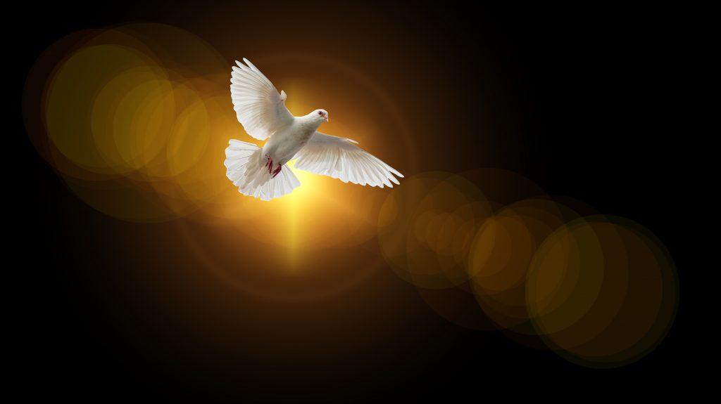 Quels sont les 7 dons de l'Esprit Saint et le don de Dieu
